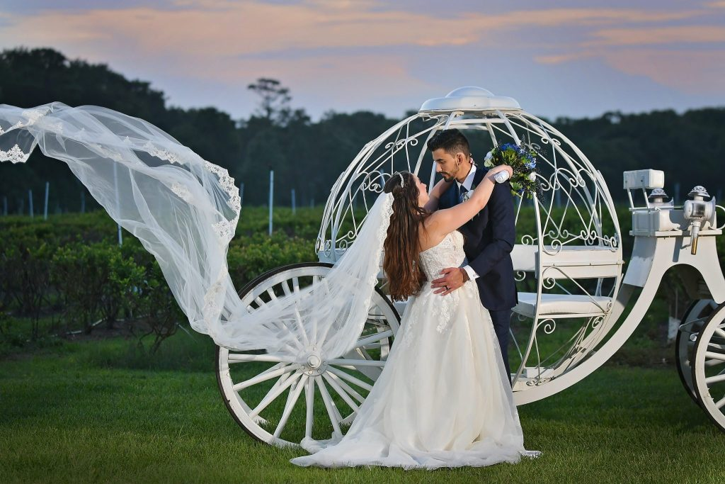 Blueberry farm wedding in Mims